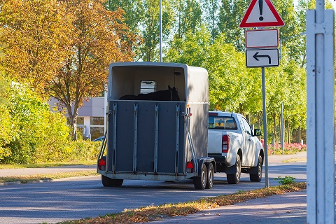 Horse Trailer Insurance with Insurance Protector